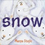 """Image of a book: """"Snow"""""""